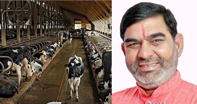 हरियाणा डेयरी को एक साल में 42 करोड़ 25 लाख रु. का लाभ: जीएल शर्मा